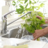 what to know about your kitchen sink