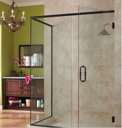 Shower Door Brushed
